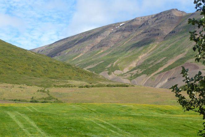Island - Akureyri - Flusstal Richtung Grenivik-5