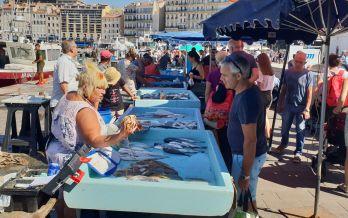 Marseille - Fischmarkt-2