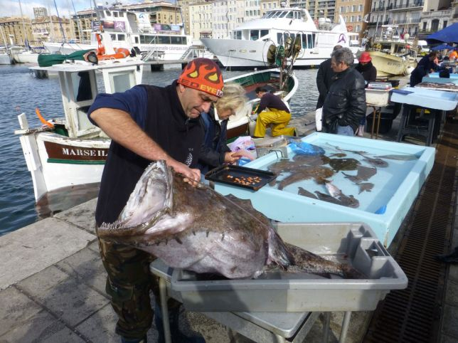 Marseille - Fischmarkt