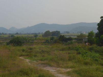 Hanoi - Fahrt in die Stadt - Felder