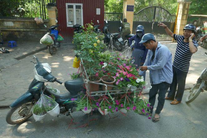 Hanoi - Straßenhändler