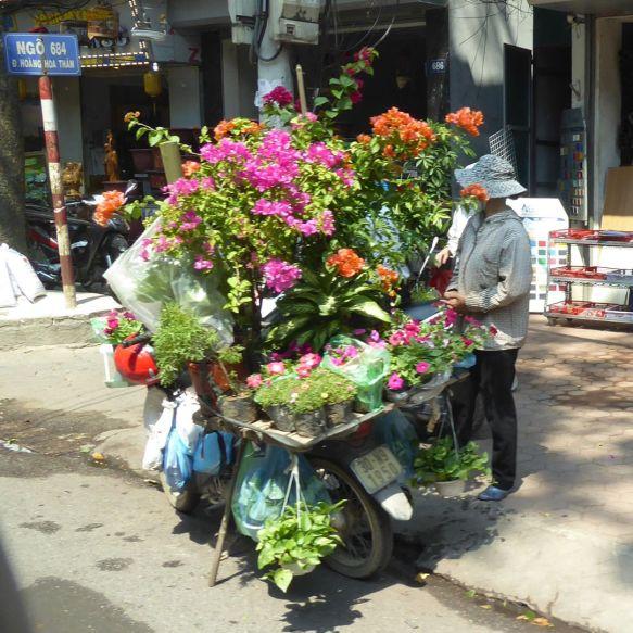 Hanoi - Blumenverkäufer