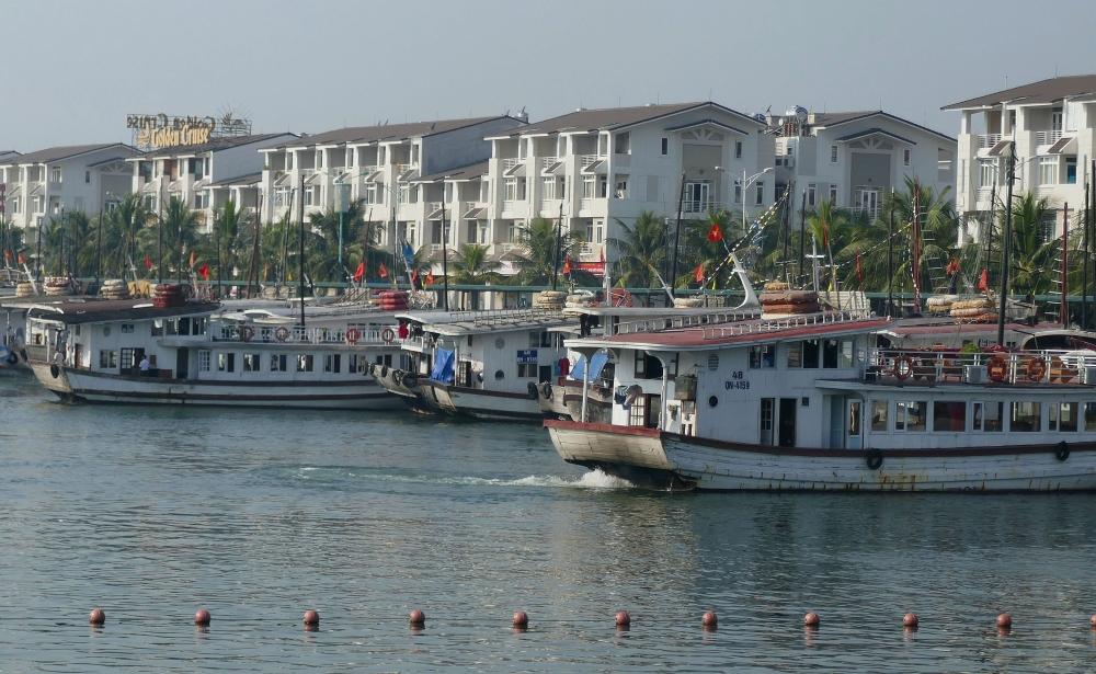 Halong Bucht - Boote im Hafen-1