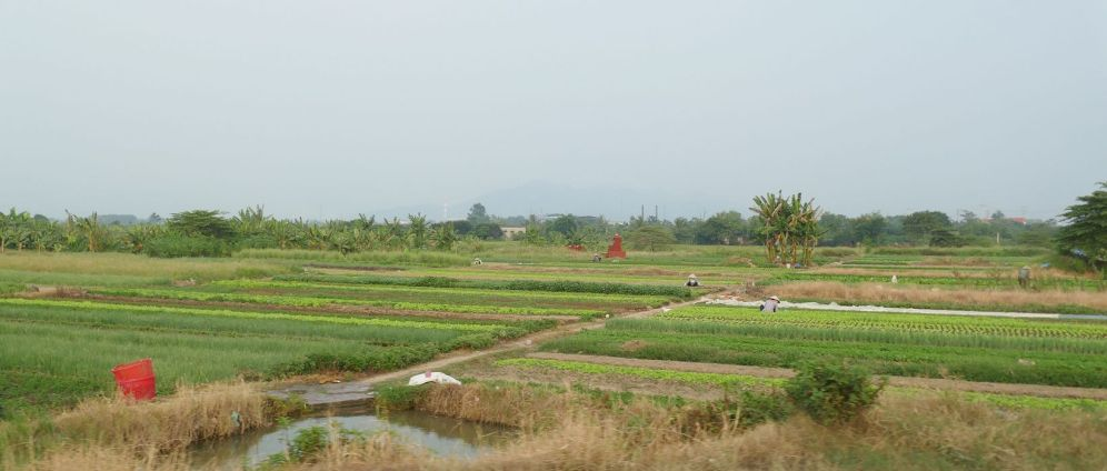 Hanoi-Halong - Landschaft-12