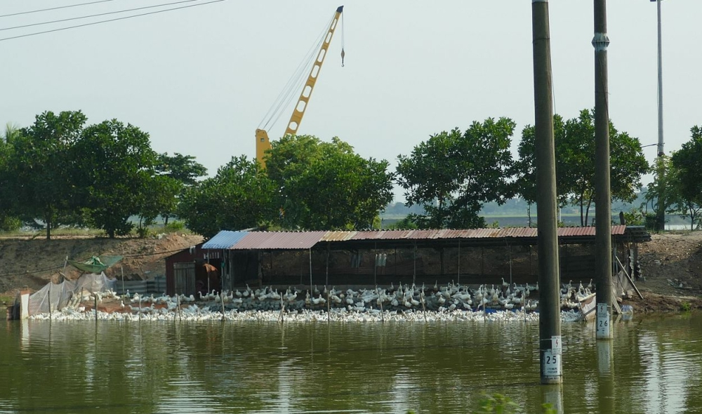 Hanoi-Halong - Landschaft-9